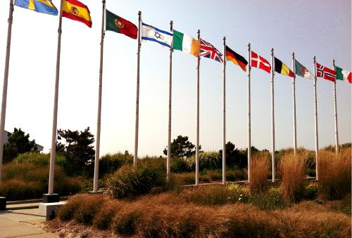 TWA 800 Flags